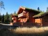 Summer fun in Norwegian log cabin