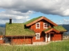 Massive log house with a grass roof
